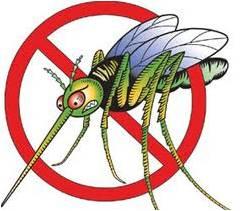 Employment Opportunity: Mosquito Surveillance Tech